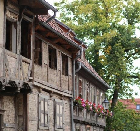 Sachsen-Thuer081